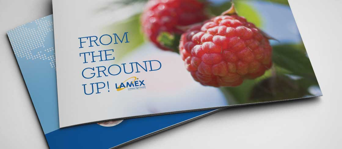 Lamex - From The Ground Up brochure cover